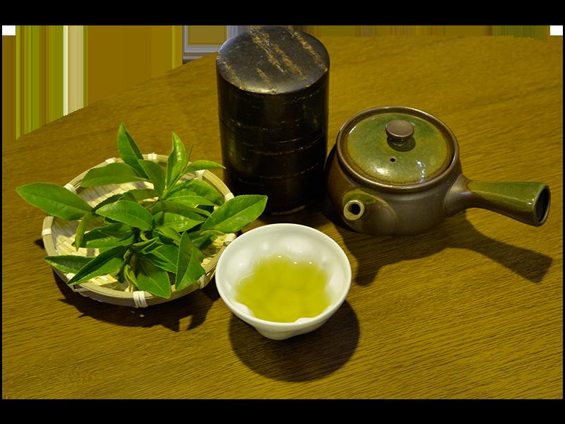 高級ブランドの狭山茶をお探しならはこや加藤園   こだわり製法で作りあげるお茶
